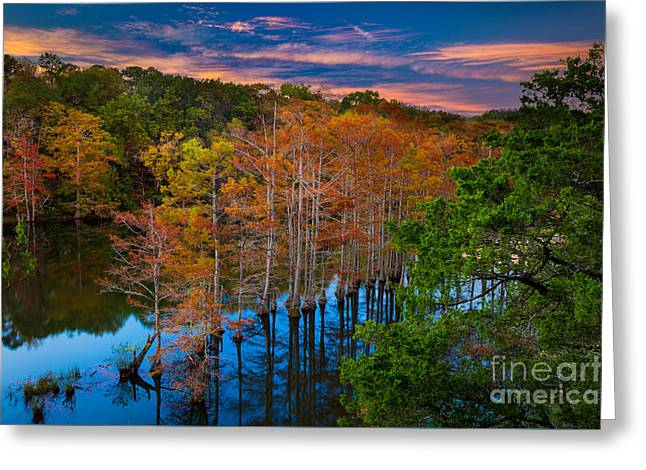 Beavers Bend Twilight Greeting Card by Inge Johnsson