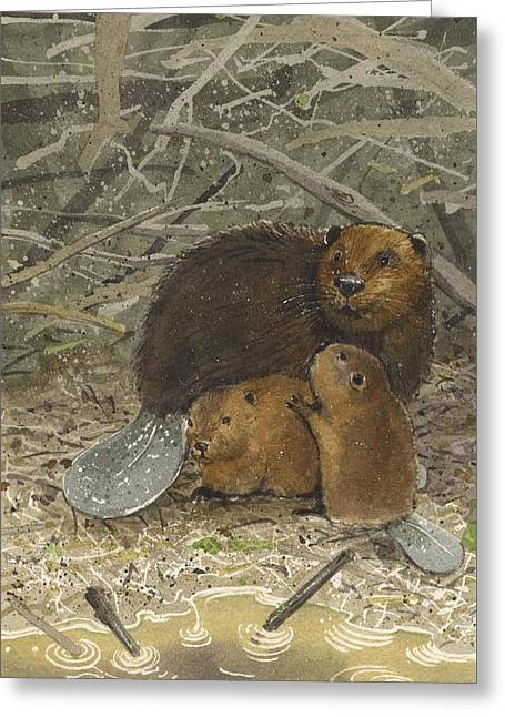 Beavers Greeting Card by Denny Bond