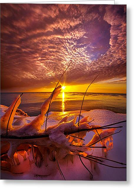 Became Entwined Greeting Card by Phil Koch