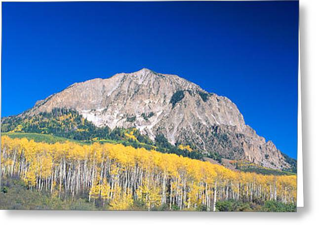 Beckwith Mountain At Kebler Pass Greeting Card by Panoramic Images