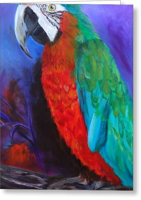 Becky The Macaw Greeting Card by Jenny Lee