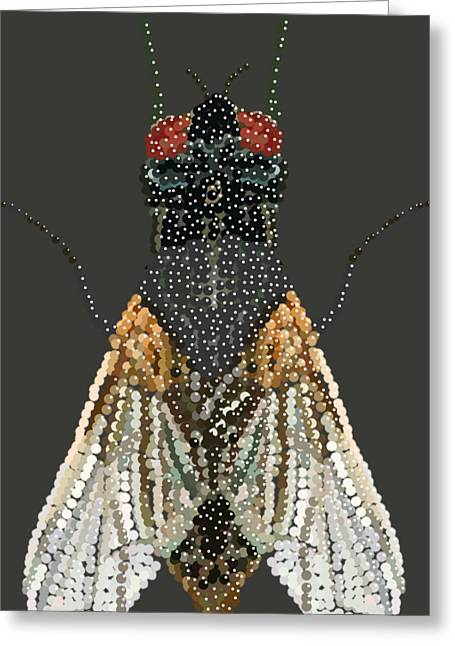Bedazzled Housefly Transparent Background Greeting Card
