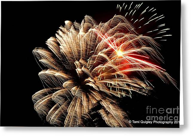 Bedazzling Freedom Greeting Card by Tami Quigley