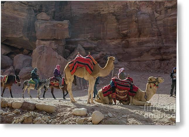 Bedouin Tribesmen, Petra Jordan Greeting Card