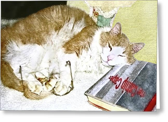 Bedtime Cat Greeting Card