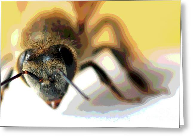 Greeting Card featuring the photograph Bee In Macro 5 by Micah May