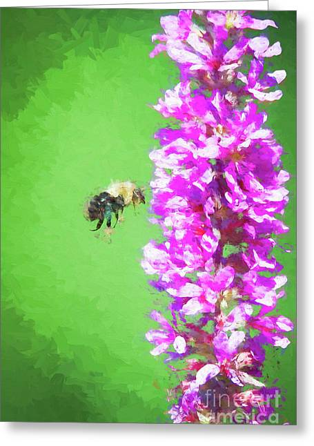 Bee Kissing A Flower Greeting Card
