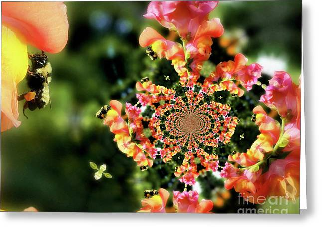 Bee On Snapdragon Flower Abstract Greeting Card by Smilin Eyes  Treasures