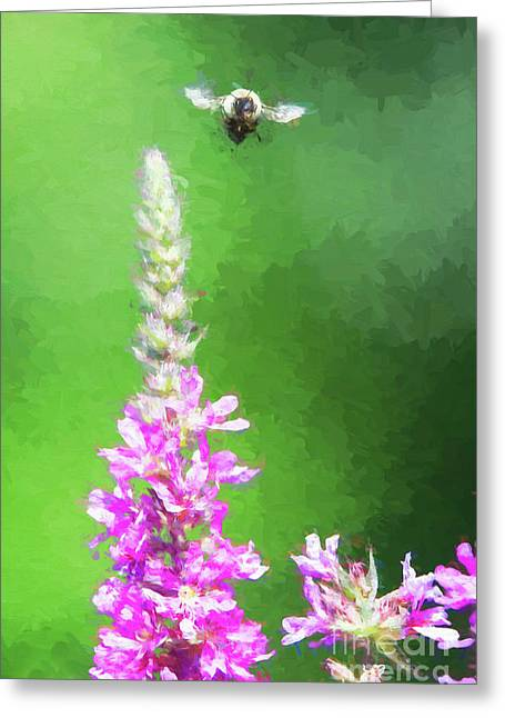 Bee Over Flowers Greeting Card