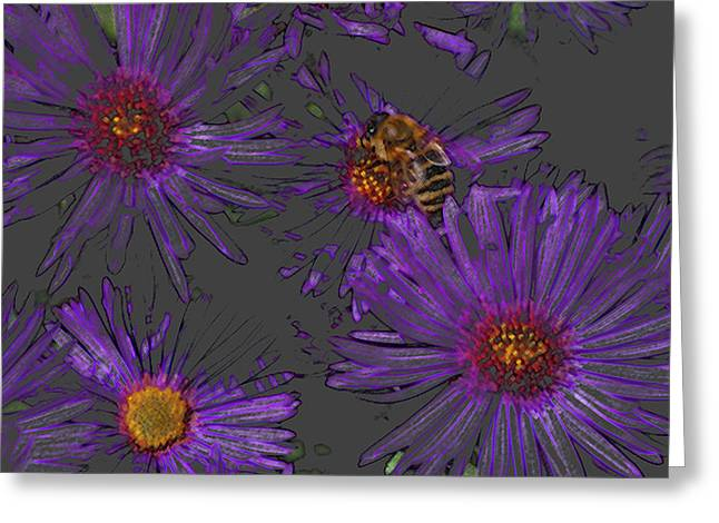 Bee With Asters On Gray Greeting Card by ShaddowCat Arts - Sherry