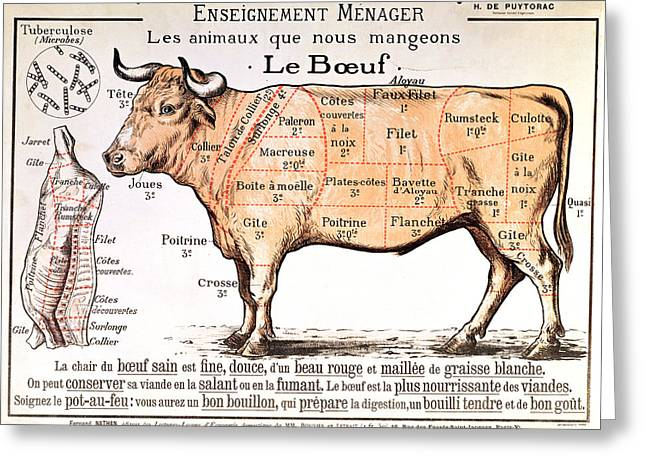 Cattle Greeting Cards - Beef Greeting Card by French School