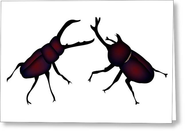Beetle And Stag Beetle Greeting Card