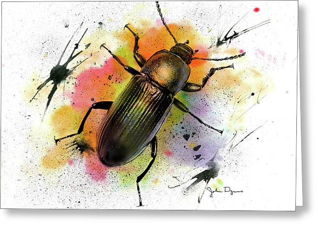 Beetle Illustration Greeting Card