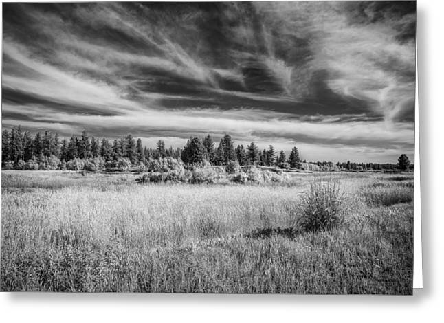 Before Us Greeting Card by Jon Glaser