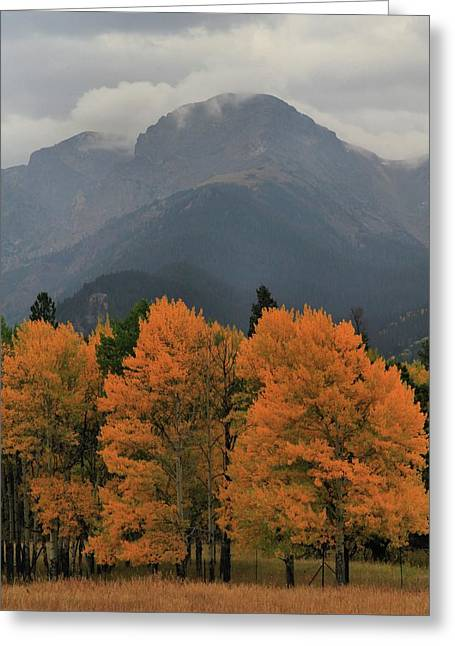 Beginning Of Autumn In Rocky Mountain National Park Greeting Card by Dan Sproul