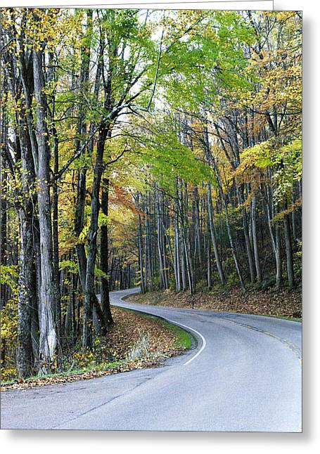 Beginning Of Fall In Gsmnp Greeting Card by Hollie Reid