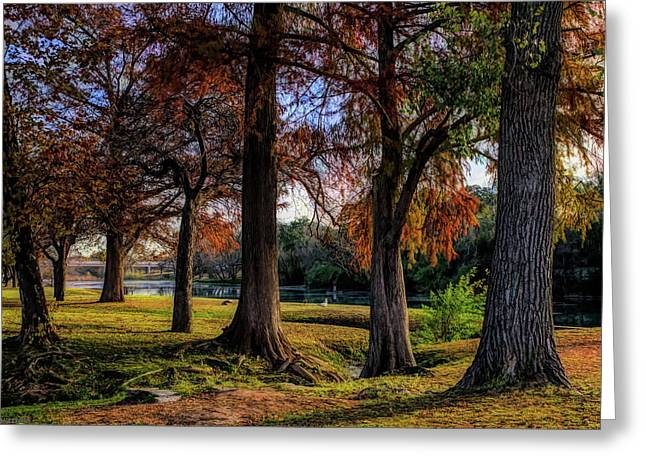 Beginning Of Fall In Texas Greeting Card