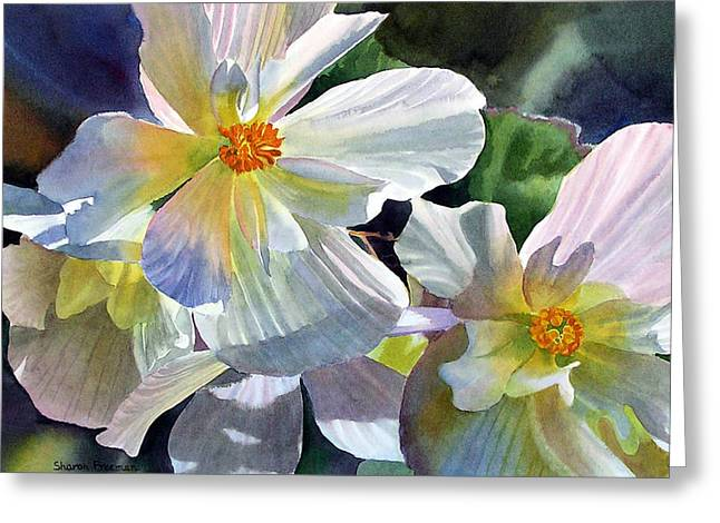 Begonias Greeting Cards - Begonia with Rainbow Shadows Greeting Card by Sharon Freeman