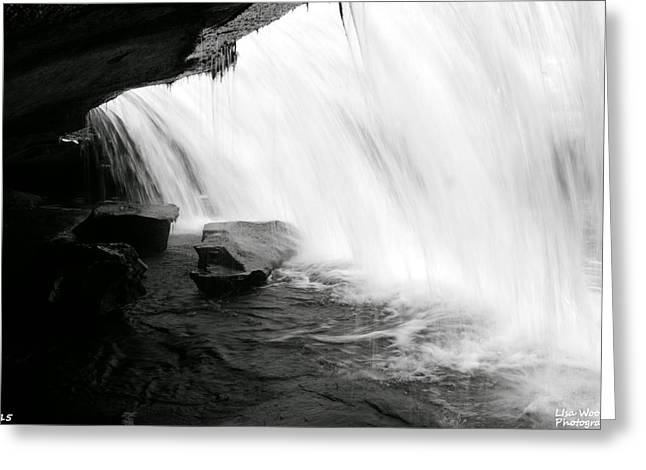 Behind The Falls Black And White Greeting Card by Lisa Wooten