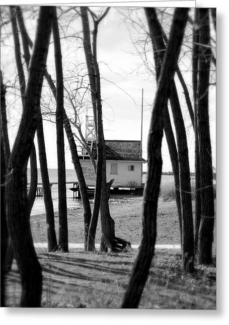 Greeting Card featuring the photograph Behind The Trees by Valentino Visentini