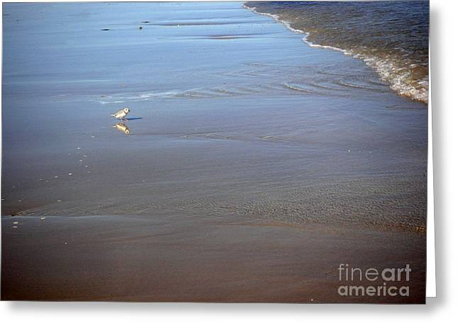 Being One With The Gulf - Cautious Greeting Card by Lucyna A M Green