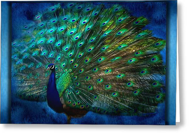 Being Yourself - Peacock Art Greeting Card