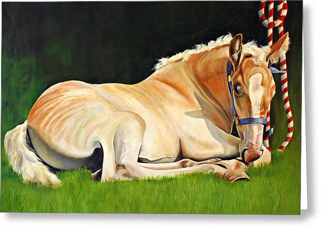 Belgian Horse Foal Greeting Card by Toni Grote