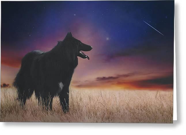 Belgian Shepherd Artwork14 Greeting Card