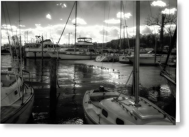 Bell Haven Docks Greeting Card by Paul Seymour