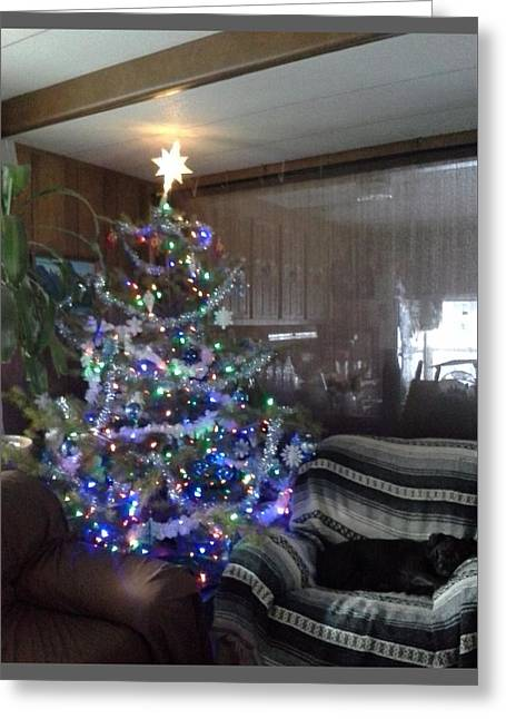 Bella Christmas 2013 Greeting Card