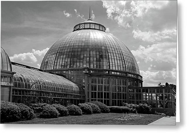 Belle Isle Conservatory 3 Bw Greeting Card by Mary Bedy