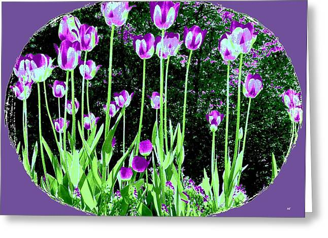 Belles Tulipes Au Printemps Greeting Card by Will Borden