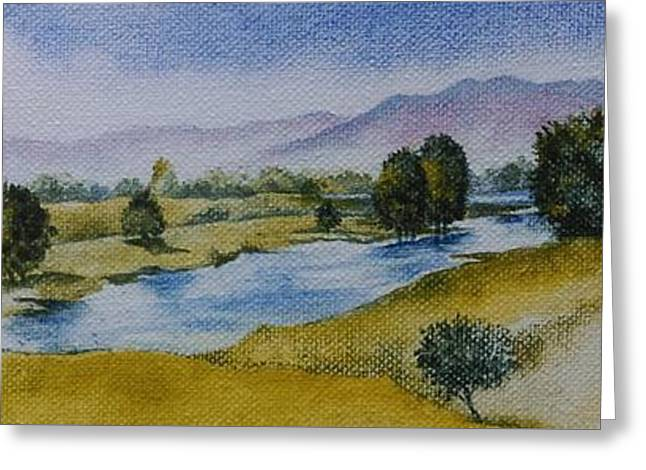 Bellinger Valley In Spring Greeting Card by Sandra Phryce-Jones