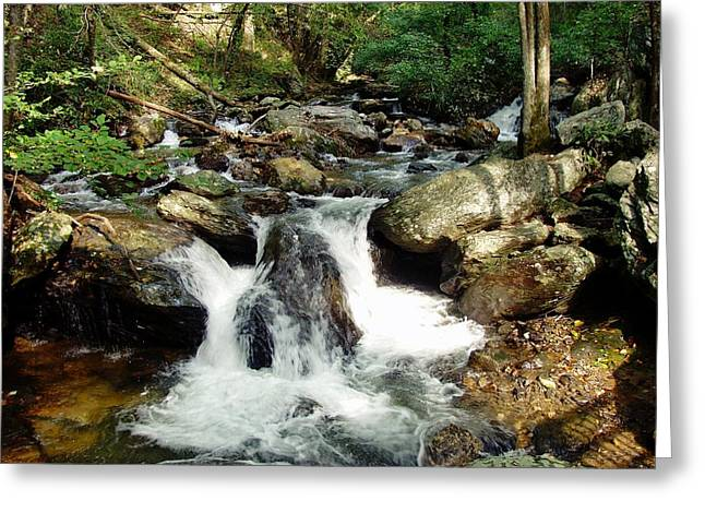 Below Anna Ruby Falls Greeting Card