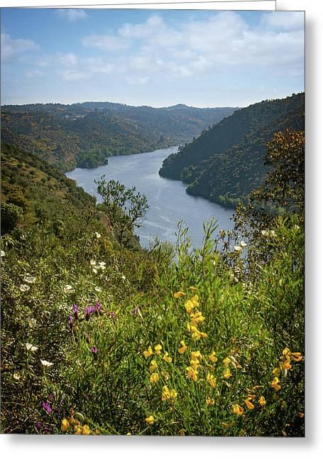 Belver Landscape Greeting Card by Carlos Caetano