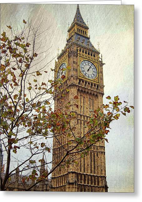 Ben In Autumn Greeting Card by JAMART Photography
