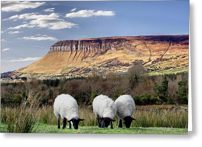 Benbulben, Co. Sligo - Sheep Grazing At The Base Of The Mountain On A Sunny Spring Day Greeting Card