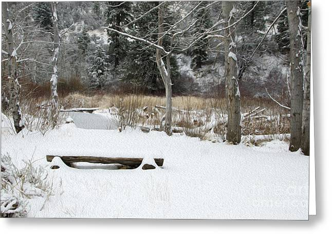 Bench At Beaver Pond Greeting Card by Mellissa Ray