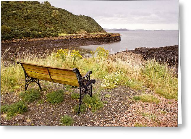 Bench At The Bay Greeting Card