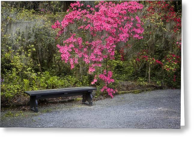 Bench In Azalea Garden Greeting Card