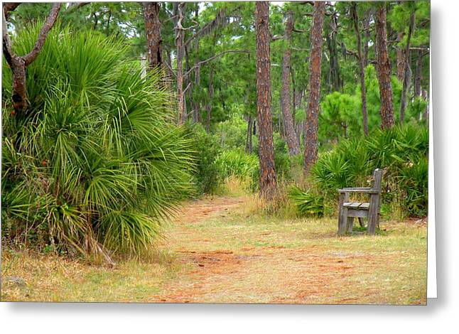Bench On The Nature Walk Greeting Card by Rosalie Scanlon