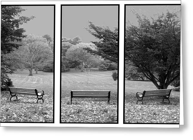 Bench View Triptic Greeting Card