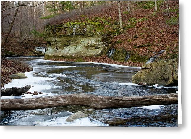 Bend In Creek Greeting Card
