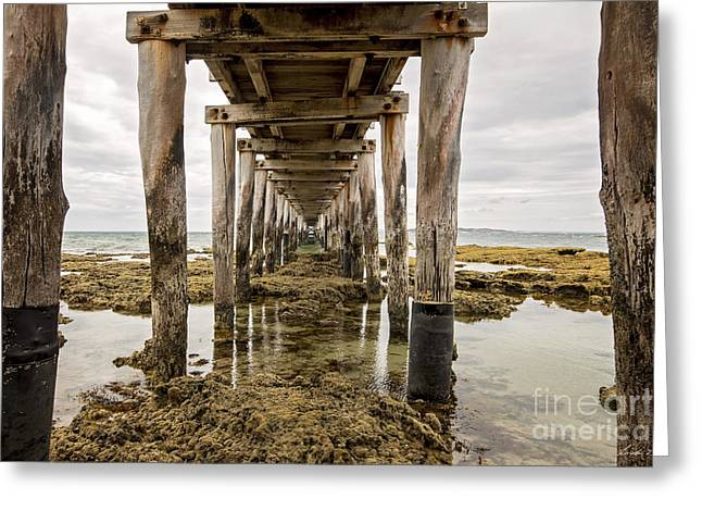 Beneath The Jetty Greeting Card by Linda Lees