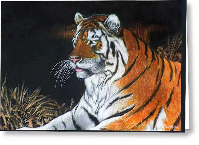 Bengal Boy  Sold Greeting Card