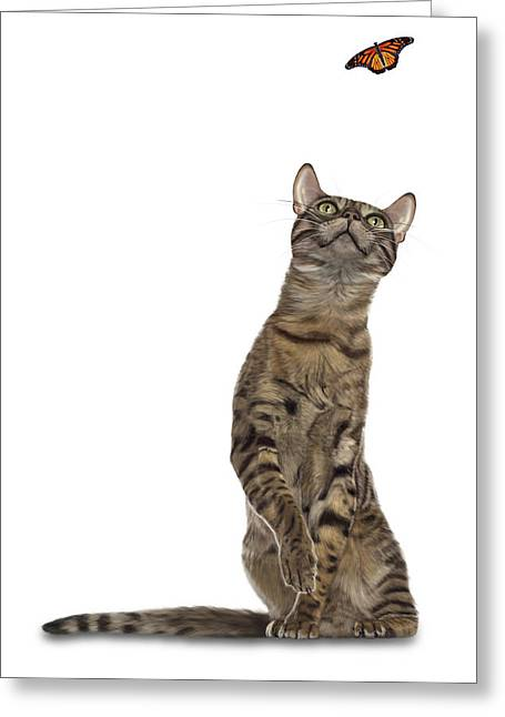 Bengal Cat With Butterfly Greeting Card