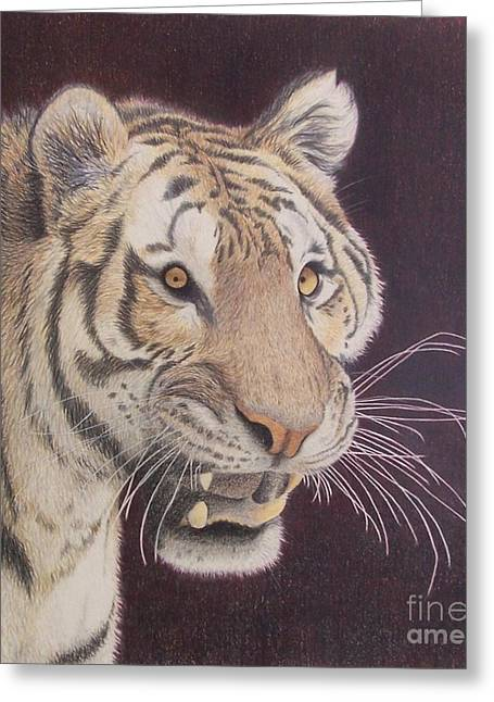 Bengal Greeting Card by Jena Suits
