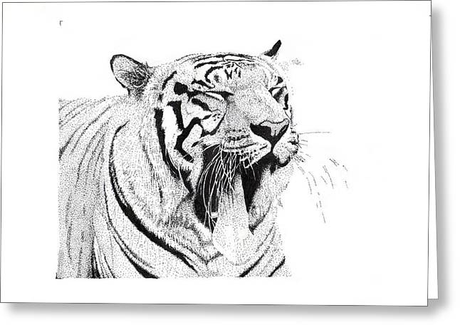Bengala Tiger Greeting Card by Angel Ortiz
