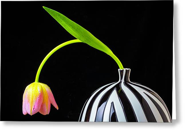 Bent Tulip In Vase Greeting Card by Garry Gay