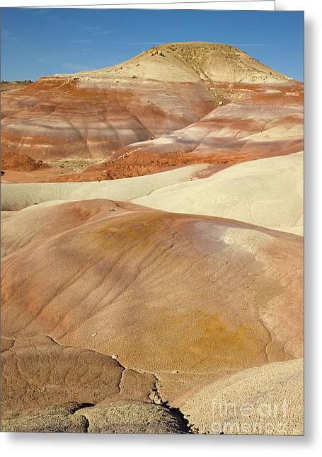 Bentonite Hills  Capitol Reef N P Greeting Card by Yva Momatiuk and John Eastcott